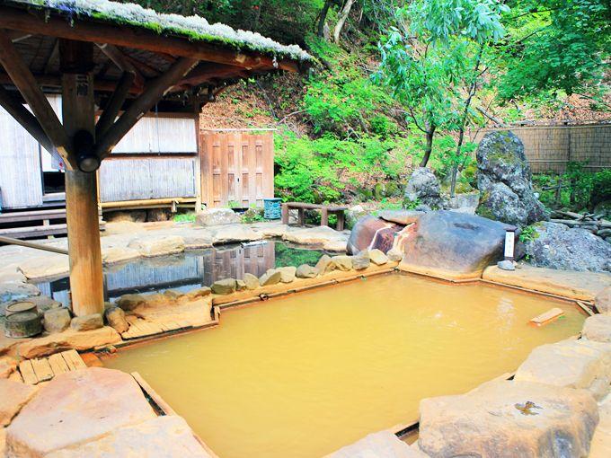 炭酸泉の泡が付く濁り湯の混浴露天風呂