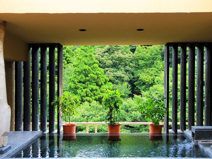 箱根で格安に泊まりたい!コスパ良のホテル・温泉旅館8選