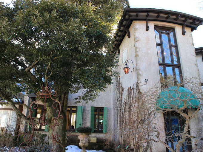 箱根ガラスの森美術館はなんと全館が撮影可能!