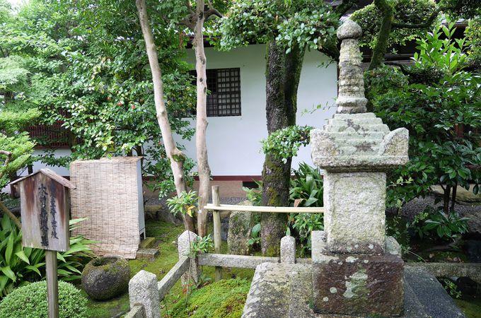 「義仲寺」の名が表す木曽義仲の足跡
