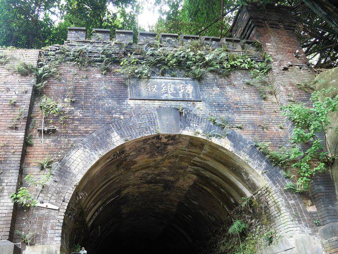 猫狸山公園のキラキラ鉄道トンネル