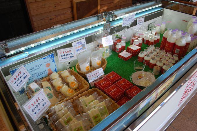 地元でも大人気!!『清里ミルクプラント』の美味しい乳製品がいっぱい!!