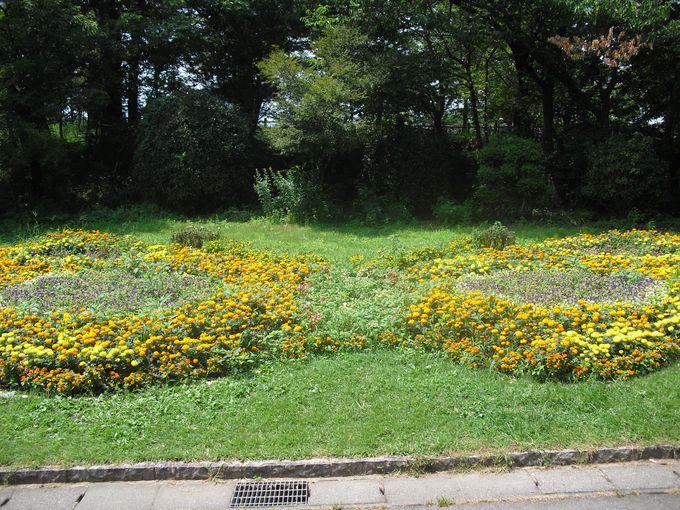 センター内には自然いっぱいの公園もあります!!