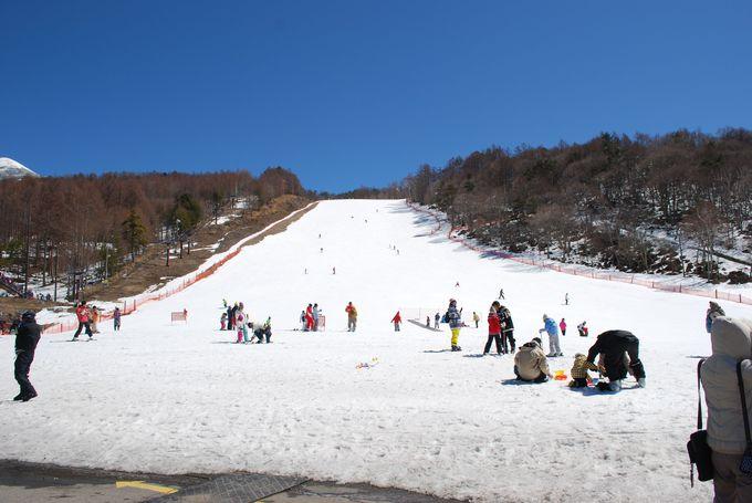 富士見高原スキー場が人気の理由は「安心・安全・暖かい」!?