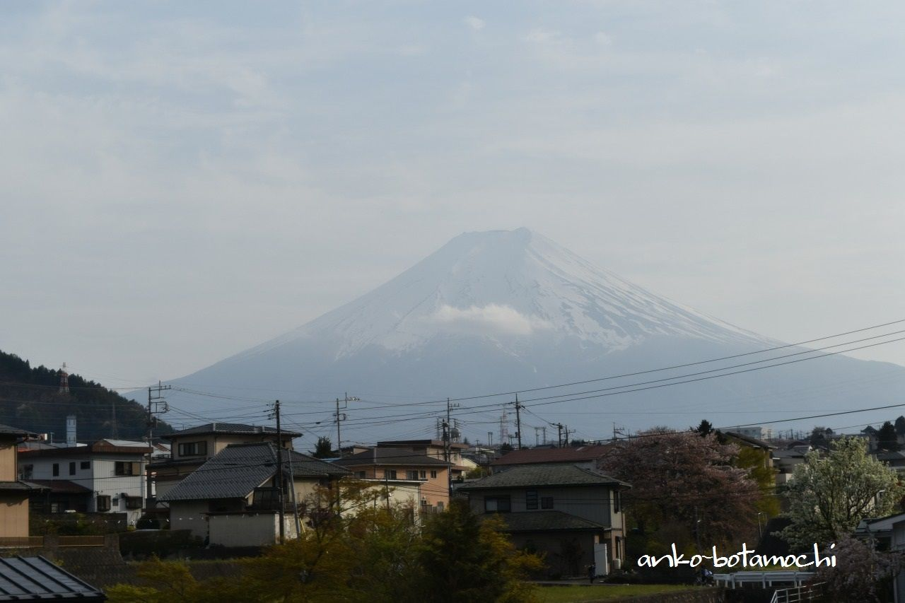 富士山ビュー特急から四季折々の景色が楽しめる
