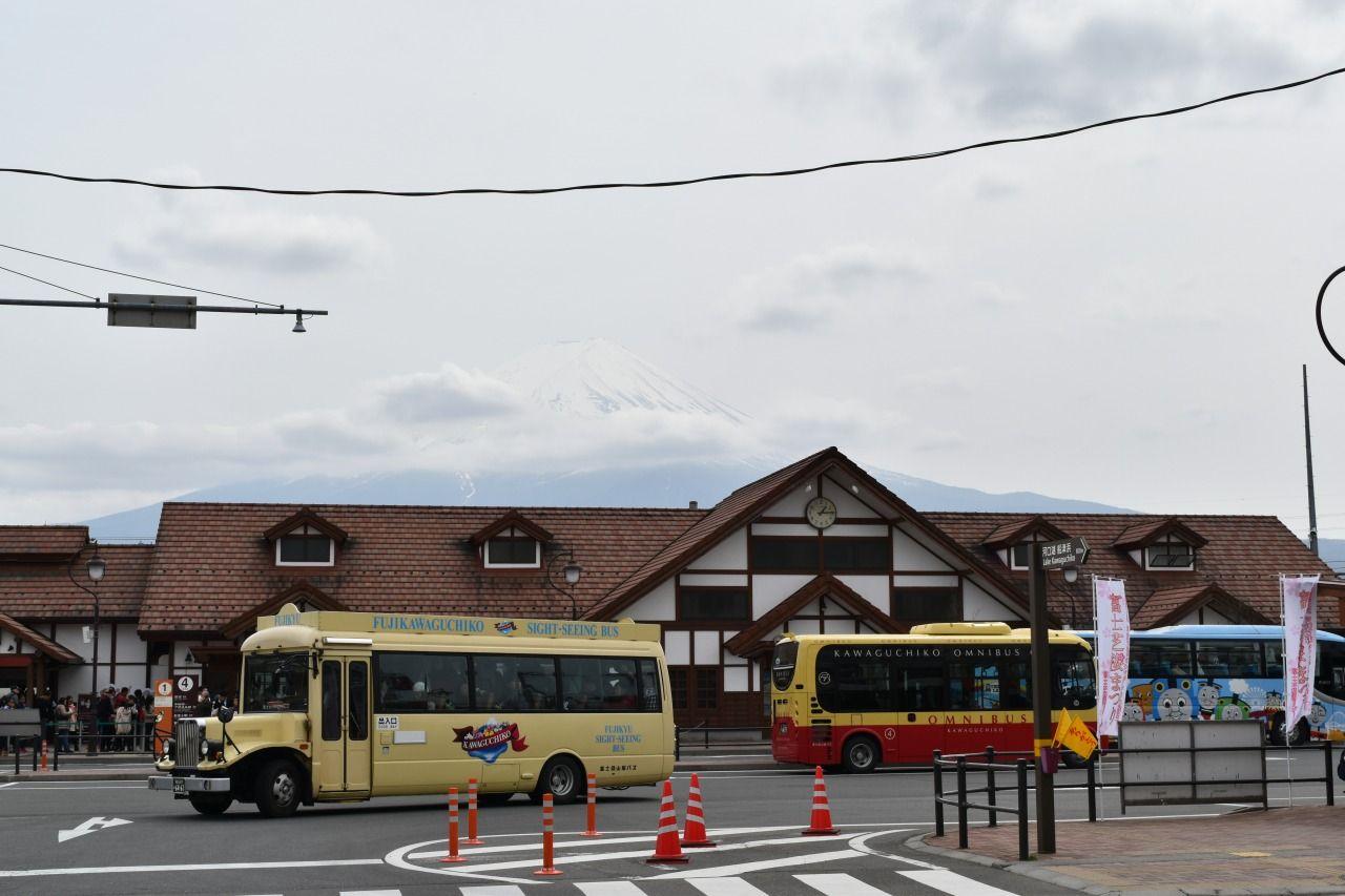 人気スポットを効率よく巡る!「山梨富士五湖定期観光バス」