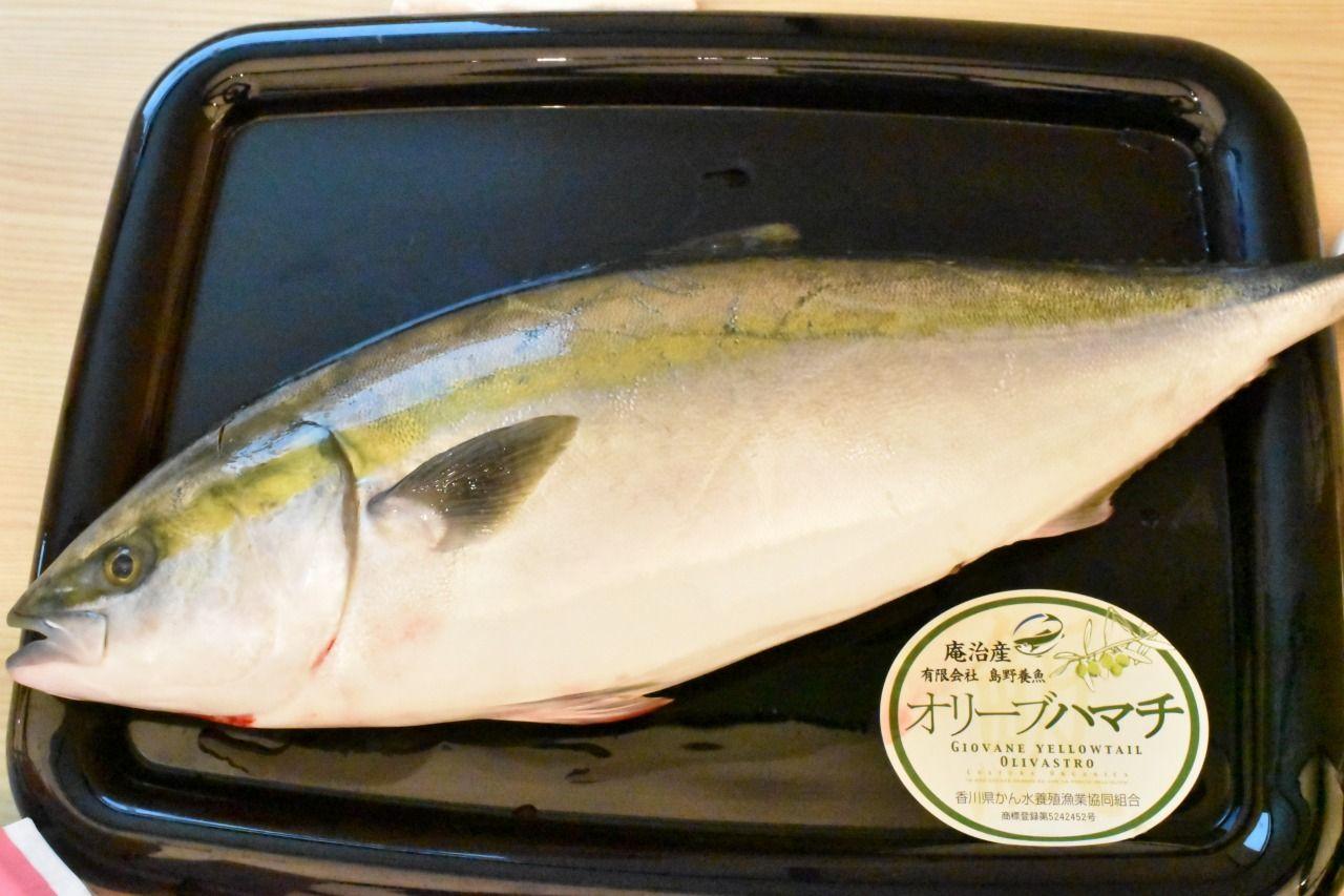 他にもある香川県のブランド魚!!