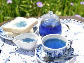 世界初の青色ジャム!?青森「青い森の天然青色」が美し過ぎる|青森県|トラベルjp<たびねす>