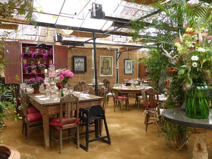 どちらも大人気!温室レストランとカフェ