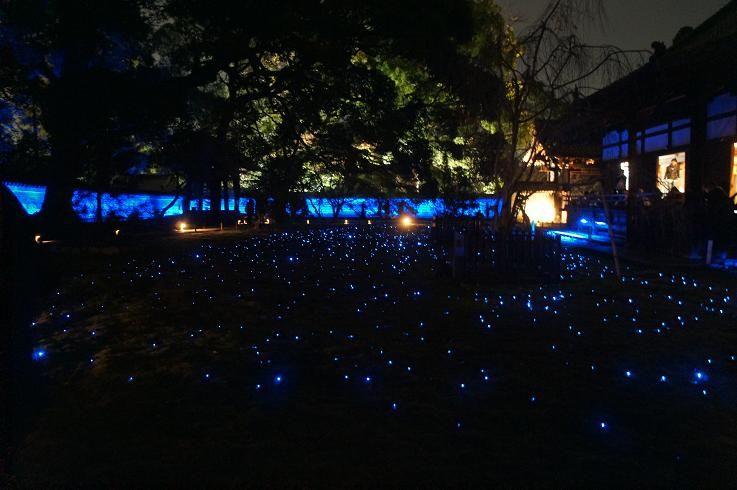 ツツジや新緑、青いイルミネーションと四季折々の美しさ!京都・青蓮院門跡