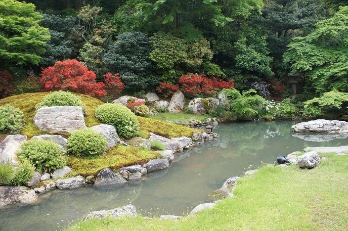 龍心池を囲む美しい新緑