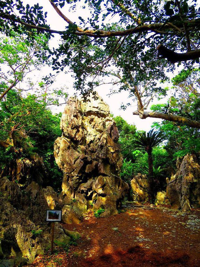 巨大な「立神の大岩」