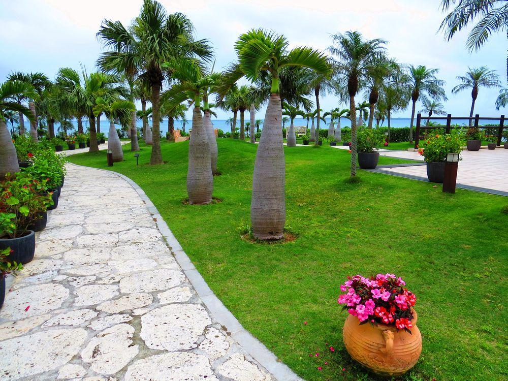 中庭からの眺めは「石垣の海」