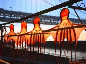 アニメ「ひるね姫」の舞台・倉敷市児島で瀬戸大橋や空飛ぶ蛸を楽しもう|岡山県|トラベルjp<たびねす>