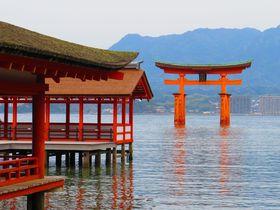 世界遺産・厳島神社で干潮時のみのスポット!神秘「鏡の池」|広島県|トラベルjp<たびねす>