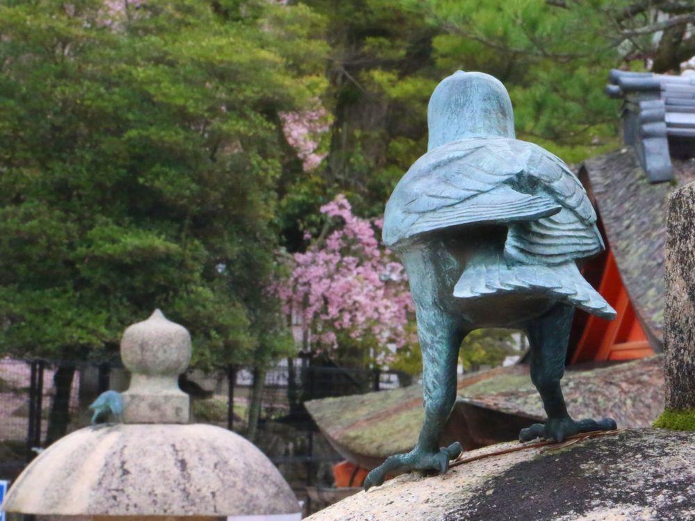 厳島神社とカラス