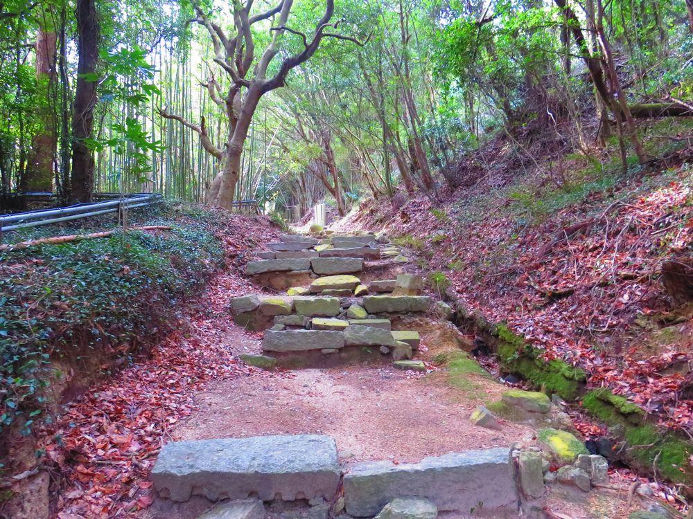 大本山正覚院に至る道