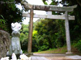 日本最古の縁結び!因幡の白兎を祀る鳥取・白兎神社|鳥取県|トラベルjp<たびねす>