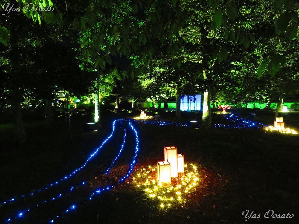 岡山城の眺めと前庭