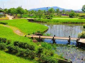 高松城址公園に見る秀吉と官兵衛の岡山・備中高松城水攻めの痕跡
