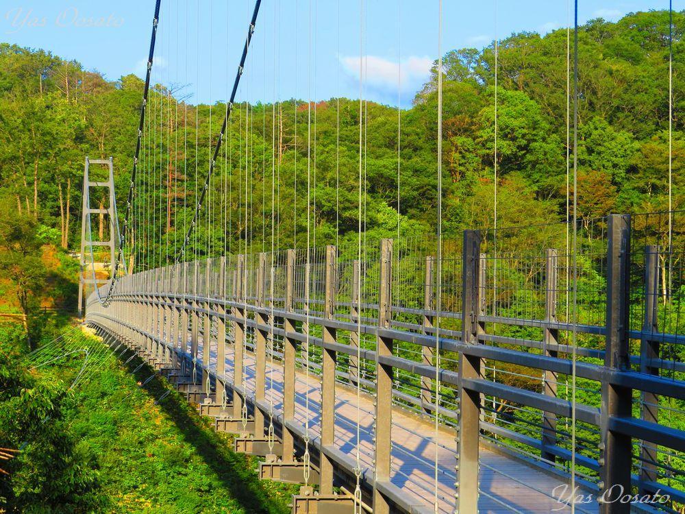 駐車場から吊橋へ