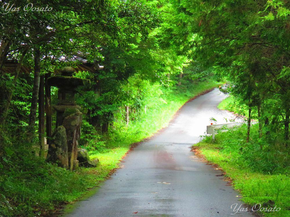 祇園寺への道