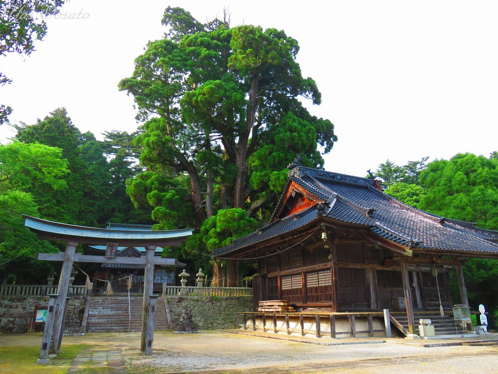 本堂横にある祇園宮と牛頭天王