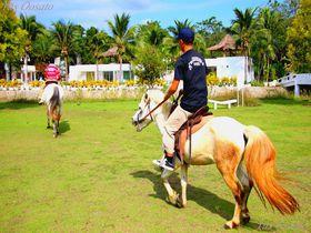 タイの美しいバーン オーム コッド クン カオでグルメと乗馬体験!