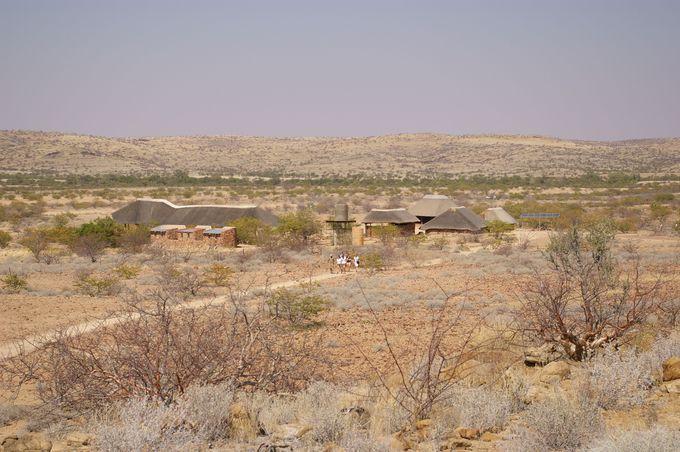 「化石の森」と呼ばれる国家遺産