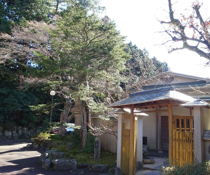 吹き抜けのラウンジで庭と箱根外輪山を眺める