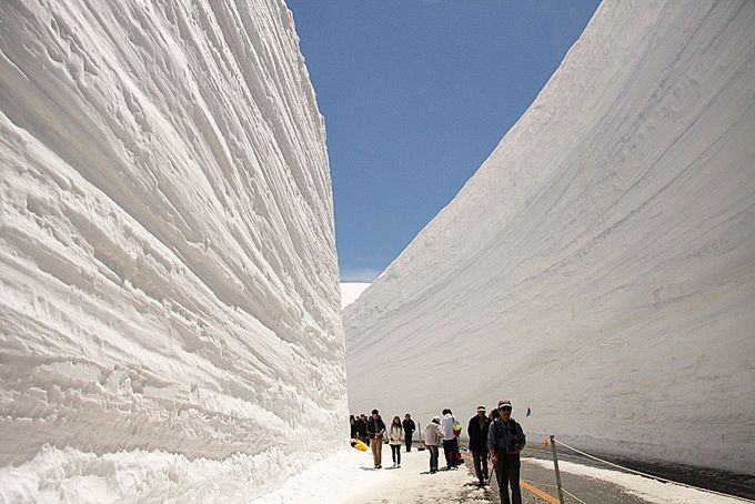 GWは雪壁ドライブ!天空の回廊を行く絶景コース「立山黒部アルペンルート」(富山)