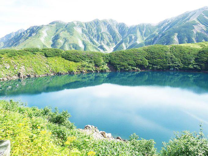 爽やかな風が吹きわたる青々とした緑が眩しいみくりが池。