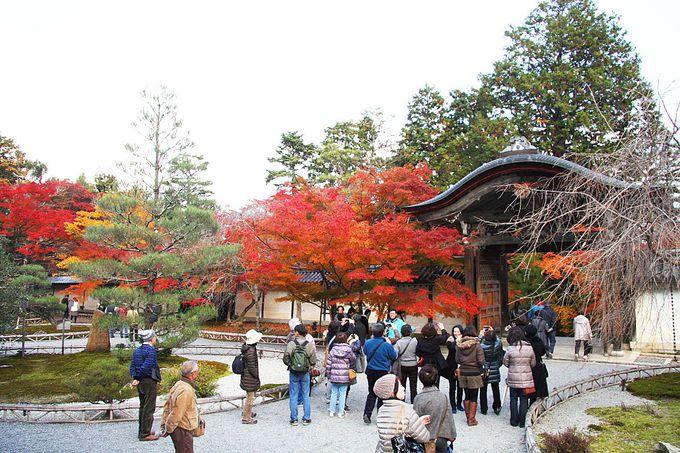 小倉山山麓の古刹風景と百人一首ゆかりの地