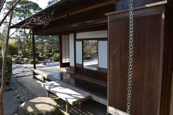 一茶と双樹、美しい日本庭園で一句