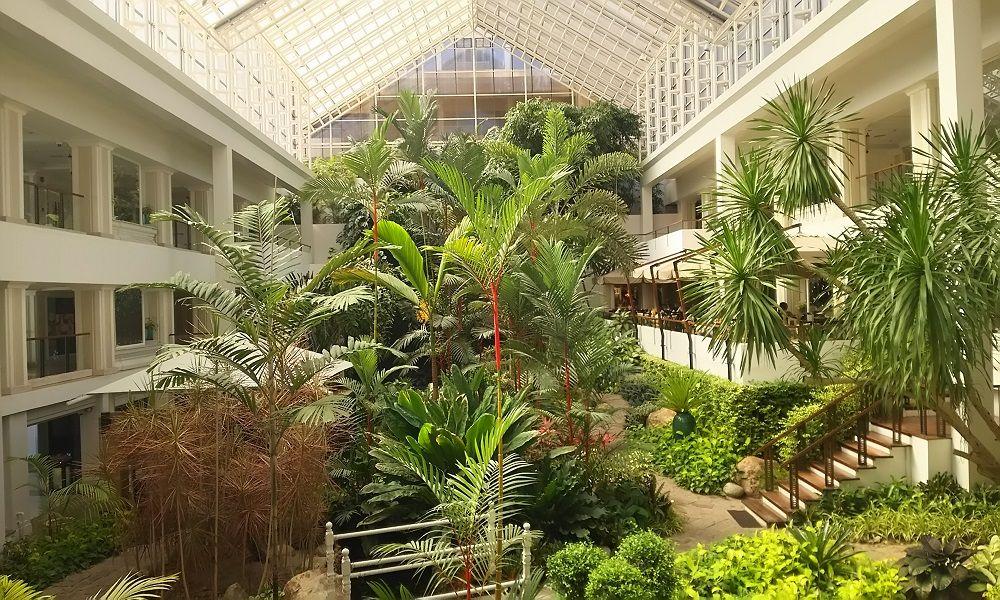 タイ高級老舗ホテルブランド「ディシュタニ」ならではの重厚感とタイホスピタリティ