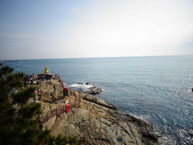 断崖の絶景ポイントから見る景色にパワーをもらおう!