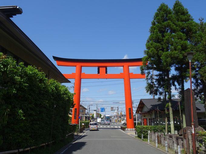 知らないのはもったいない!京都最古級の神社、松尾大社