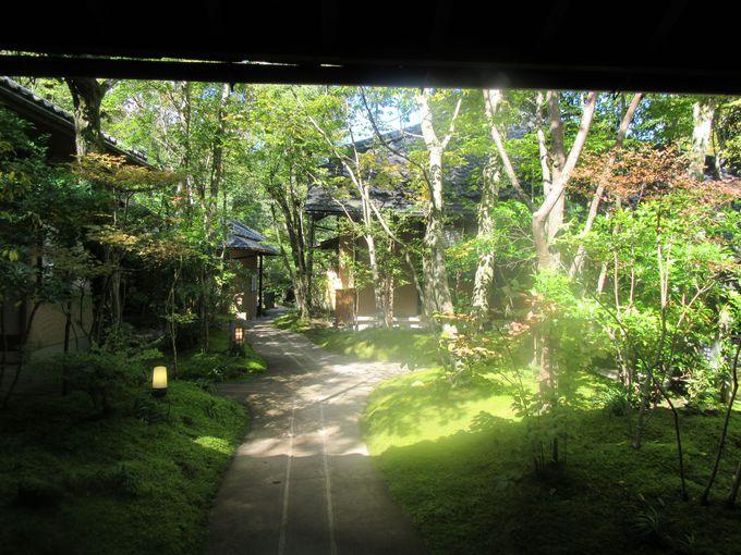 林の中にただずむお宿は庭園が美しい
