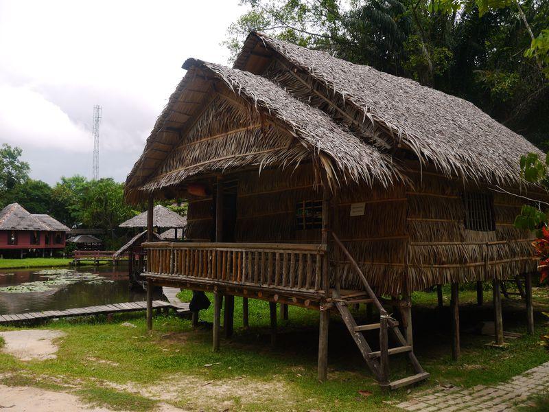 市内から10分でジャングルへ!コタキナバル「サバ州立博物館」