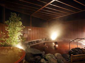 成田空港エリア唯一の天然温泉が魅力!「成田ビューホテル」で湯ったりな休日|千葉県|トラベルjp<たびねす>