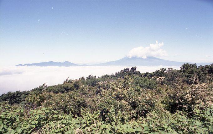 富士山と芦ノ湖を同時に見る格好のポイント山伏峠