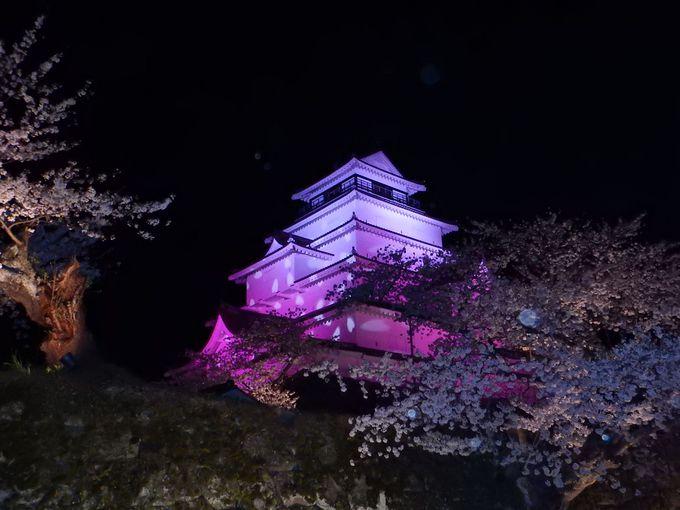 もう一つの魅力 鶴ヶ城