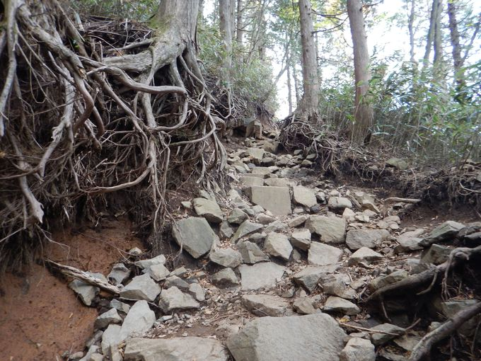 急峻で岩場の多い山