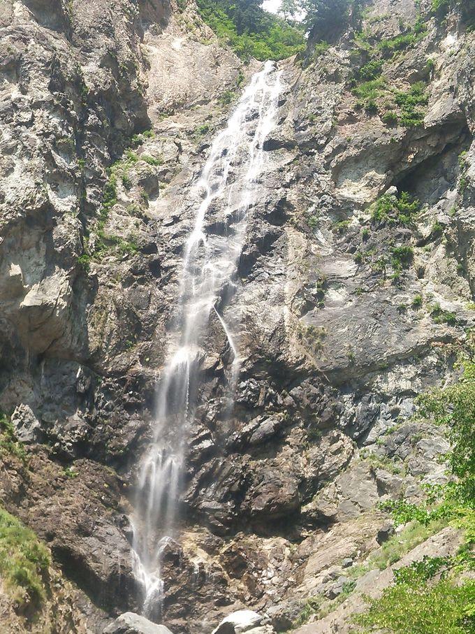 豪快に見上げる「ふくべの大滝」