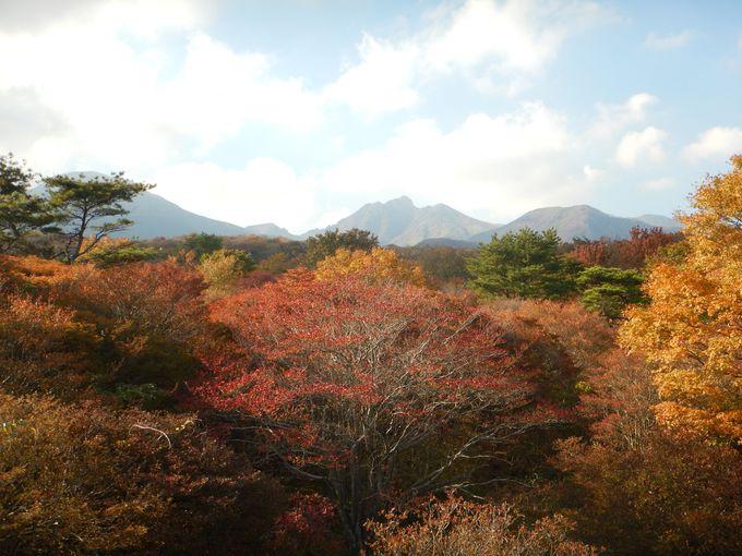 展望台から見る那須連山