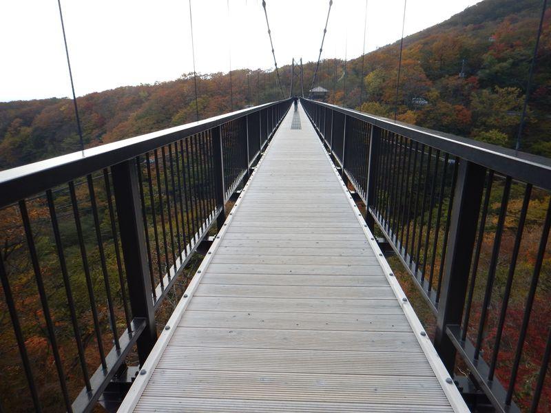 吊り橋からの絶景も!那須「八幡自然研究路」で紅葉散歩