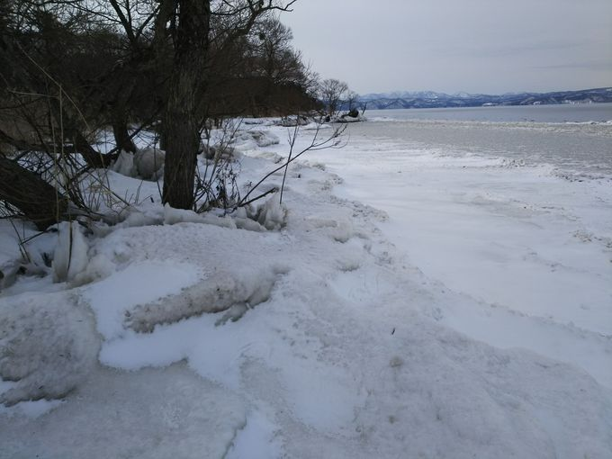 風が作る神秘の芸術「しぶき氷」