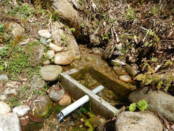 近所にある、天然炭酸泉の湧出地