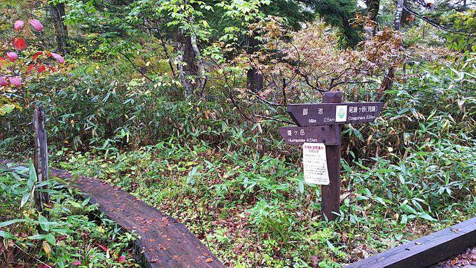 福島県檜枝岐村の御池駐車場から三条の滝へ