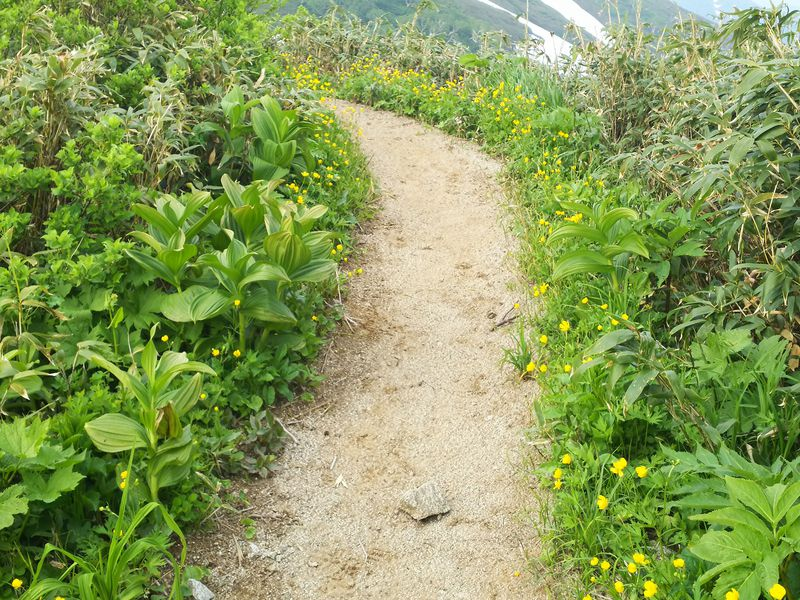 県境は幅1メートルの登山道!福島「飯豊山」で不思議な県境を体感